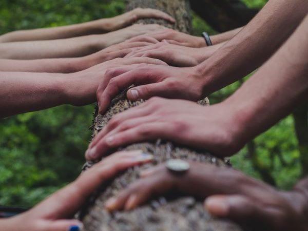 hands (4-3) - 600w